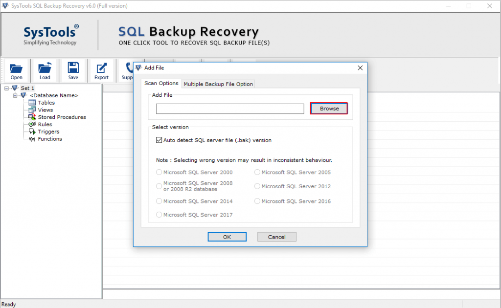 Add SQL BAK File